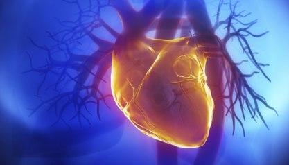 287062-heart