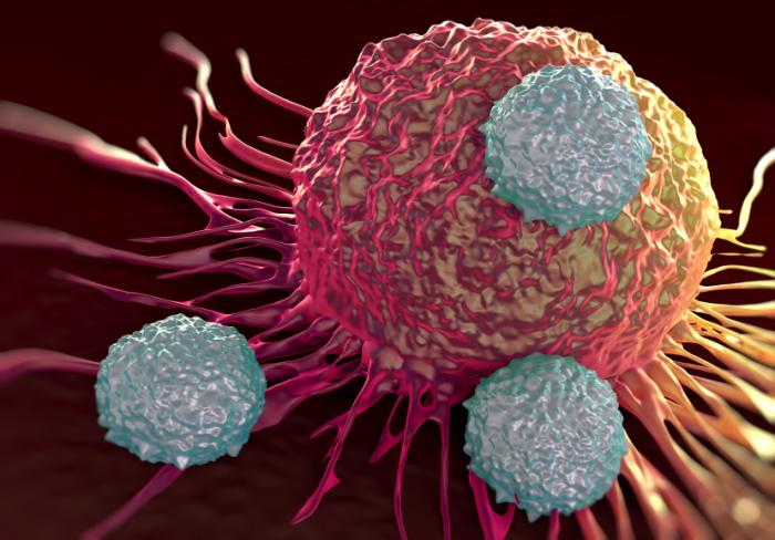 immune-cells-attacking-cancer